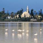 Masjid Hala Sultan Tekke di Siprus